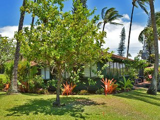 2 BD Kaanapali Cottage (13) ~ Walk to Ocean