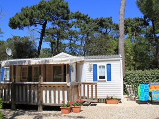 Modern family friendly 3 bedroom mobile home on a 5 star beach site