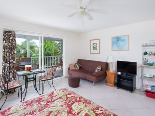 Beautiful Garden View Studio, Kitchenette, Peaceful, Large Lanai, TV, Parking