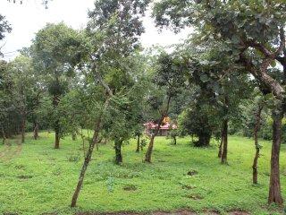 Anirvaa Greens  FamilyRoom 4