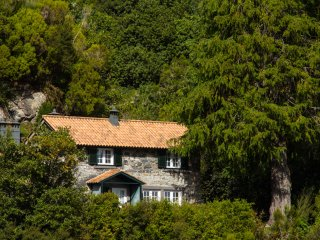 Cedro - a cottage in the mountains of Madeira