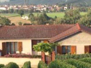 LA LOGE DU VIGNERON, vacation rental in Marne