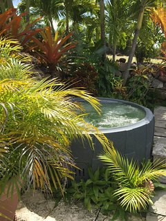 A private Jacuzzi in the hidden garden.
