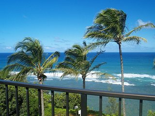 A8: 1 bedroom, 3rd floor, oceanfront