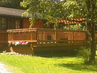 Luxury Cabin $100K Remodel, 2 BD, 1 BA, W/D, 3 FPs, 4TVs, Flat, Private, WIFI