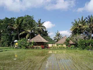 LARGE PEACEFUL VILLA IN THE RICE FIELDS NEAR UBUD