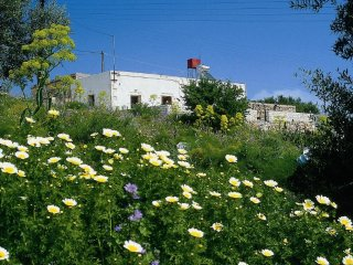 Artemis House stone cottage in Aptera village Chania