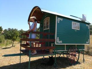 Gipsy, ecofriendly style wagon