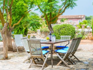 ECO PINA - Property for 6 people in Costitx