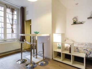 Flat in the heart of Lyon Place des Jacobins
