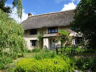 SHILL Cottage in Holsworthy