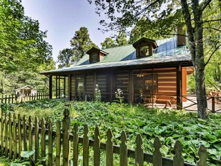 NEW! 3BR Black Mountain Cabin w/Natural Views!