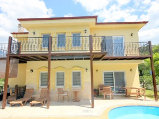 Villa Orkide -Luxury Villa, large private pool,jacuzzi -Maras Area