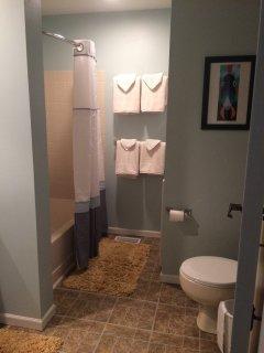 Shower/bathtub in full bath.