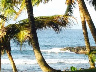 Oceanfront Building at the Maui Sands #706