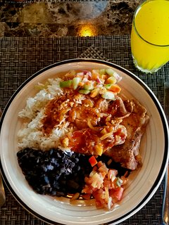 Tico Dinner ... Chicken, Rice, Beans, Salsa, Salad and Fresh Squeezed Local Juice. $12/person
