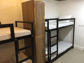 Comfort Stay The Backpackers Hostel Bed in 8-Bed Mixed Dormitory Room