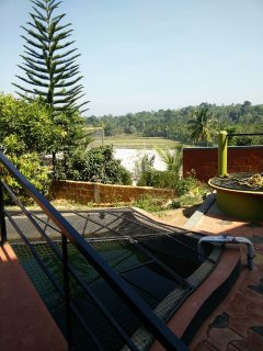 THE GREEN TREASURE – A Family Homestay in Coorg
