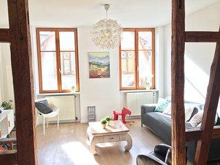 Gite Atelier de Hansi Centre historique Colmar