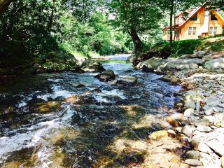 Shady Creek, PRIVATE, Trout Fishing, Sparkling Hot Tub, Fireplace, WiFi