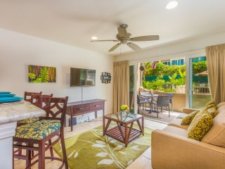 2 Bedroom Oceanfront Kapaa Condo with Pool & A/C (115)