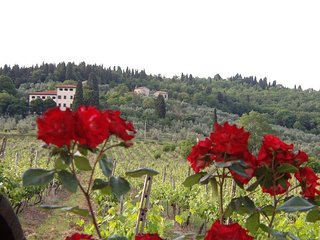 6 bedroom Villa in San Donato in Collina, Tuscany, Italy : ref 5241561