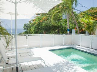 Suite 1 –Tropical Suites at 413 – Private Deck