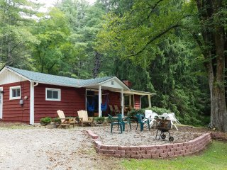 3BR Asheville Cabin w/Wooded Views!