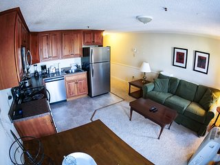 Snow Guarantee:Free Hot Tub&Pool, Renovated, Deluxe ML#345;1BR/1Bath*Ski in/Ou