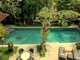 Beautiful Ubud Style Classic Villa with Lap pool