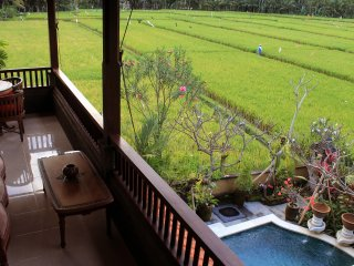 Beautiful Ubud Style 3 Bedroom House
