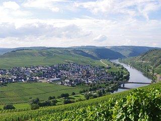'Meine Tante'  Ferienwohnung in Trittenheim / Mosel