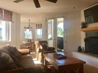 Great natural light with an abundance of windows. New flat screen TV.