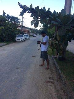 Rua em frente a casa.