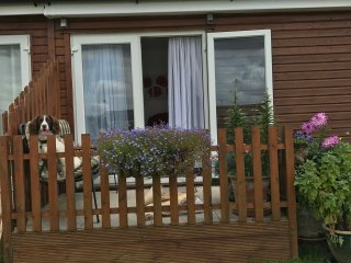 Woodland View - Self contained chalet with 1 bedroom & sofa bed in lounge