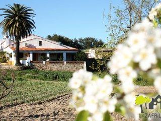 Casa Rural La Zafrilla ¡¡ Disfruta de la Naturaleza!! Ven con familia y amigos