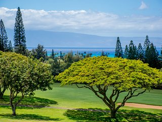 Stunning ocean and golf course views!