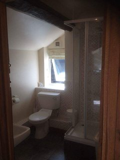 Downstairs shower room with toilet and hand basin.