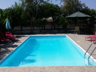 Vacation house in Protaras Paralimni, with a private pool and beautiful garden.