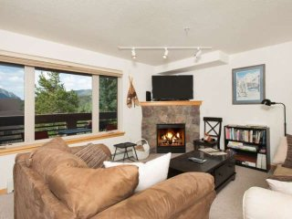 Great Value Just Minutes To Breckenridge, Keystone/All Skiing-Indoor & Outdoor H