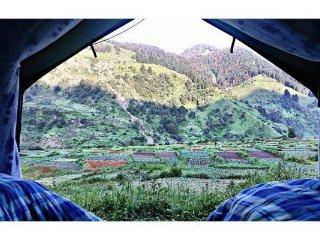 Holidaydada Nature Camps, Badagran Barot