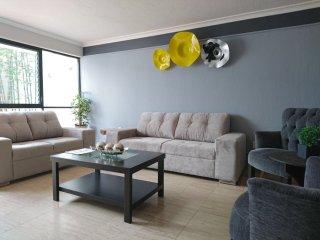 Hermosa Casa Minimalista en Providencia