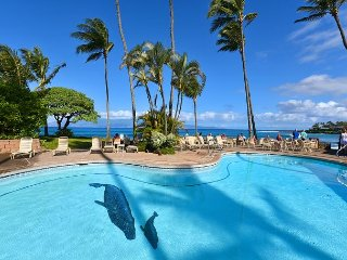 Napili Shores C116: Air Conditioned Studio Just Steps To Napili Bay!!
