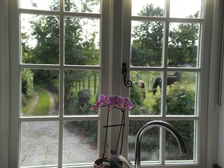 Cottage in grounds of Old Rectory, on the edge of the village of Lapford