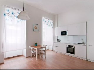 Beautiful apartment in the city center Vienna
