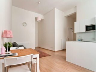 Cozy apartment in the city center Vienna