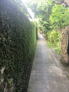 Villa Segara is on left at end of this green wall.