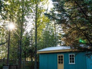 Backyard Village - Blue Cottage