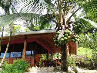 Arroyo Cottage minutes from Manuel Antonio