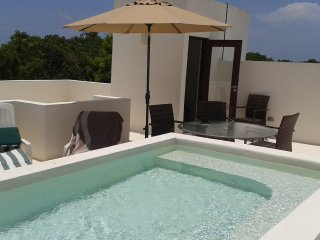 FUN Penthouse B301 - Private Rooftop Pool & Jacuzzi - Nude Friendly B301